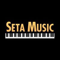 Baldwin Seta Music