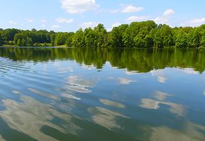 Seneca Creek Disc Golf