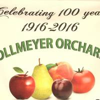 Hollmeyer's Orchard