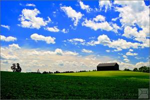 Thistlehair Farm