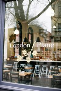 The London Plane