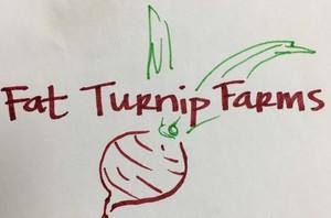 Fat Turnip Farms